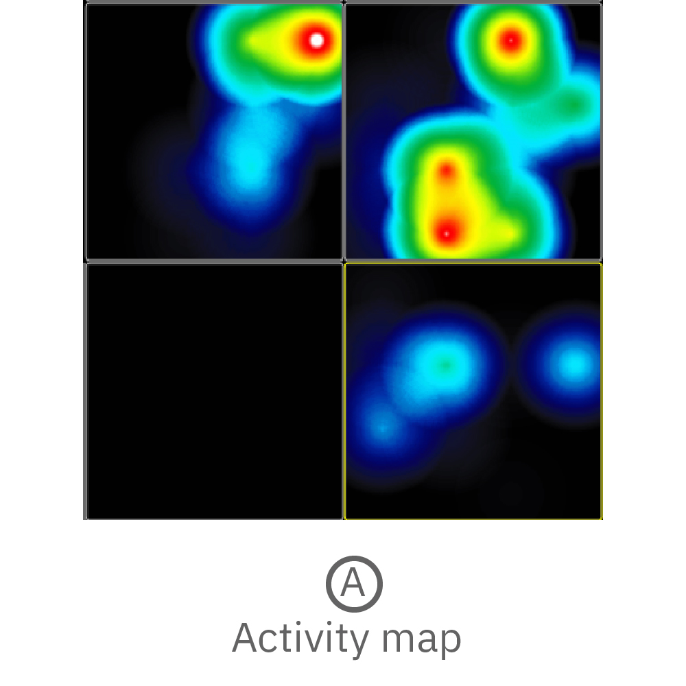 Activity map displaying instantaneous firing rate of four wells with multiple cerebral organoids in each well.