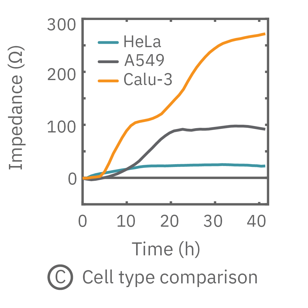 Maestro monitored the growth of three cell types, HeLa, A549, and Calu-3, and readily distinguishes their distinct cell profiles over time.