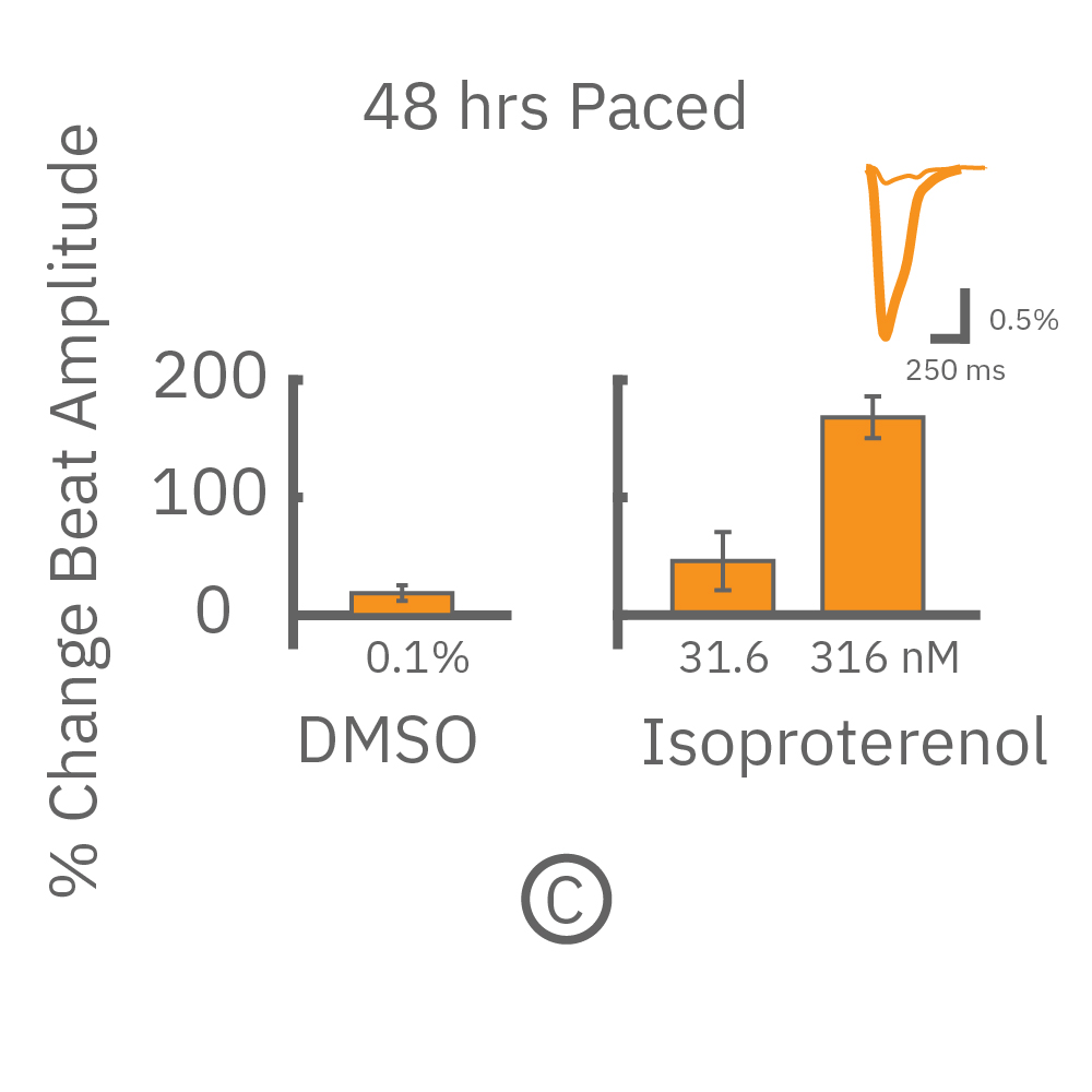 48 hours paced and then dosed with positive inotropes showed a positive dose-dependent increase in beat amplitude.