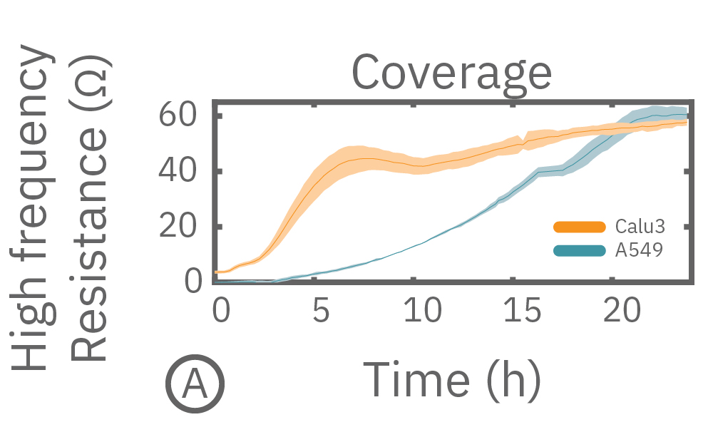 Measurement of TEER or impedance as cell coverage increases over time