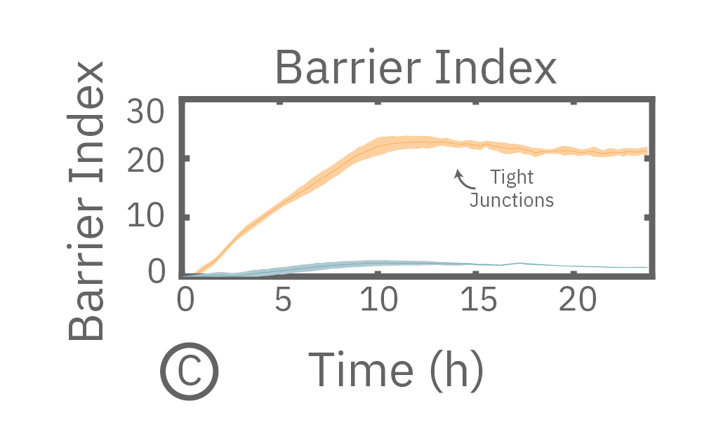 Barrier index
