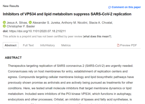 2020 Silvas Suppression of  SARS-CoV-2 replication