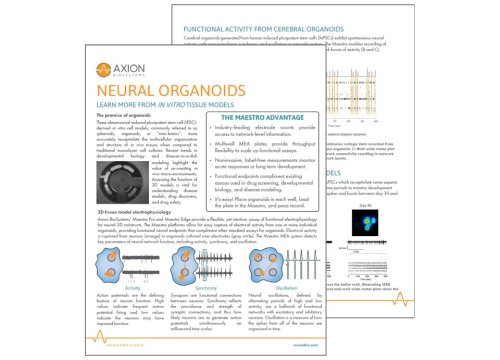 Axion Bio App Note Neural Organoids or mini brains
