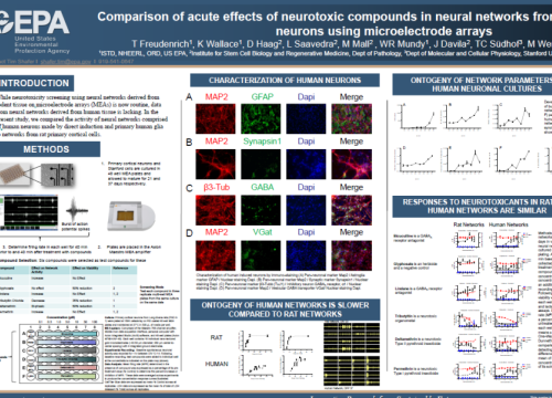 2020 Neucyte poster neurotoxic compounds on neural networks on multwell MEA system