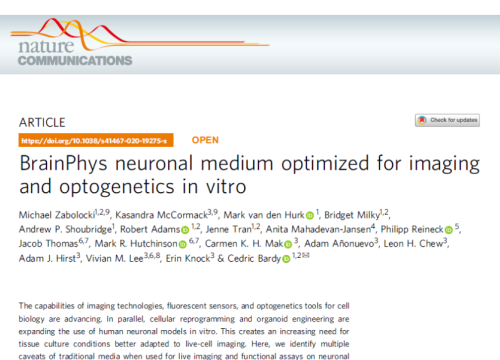 2020 publication neuronal medium optimized for optogenetics