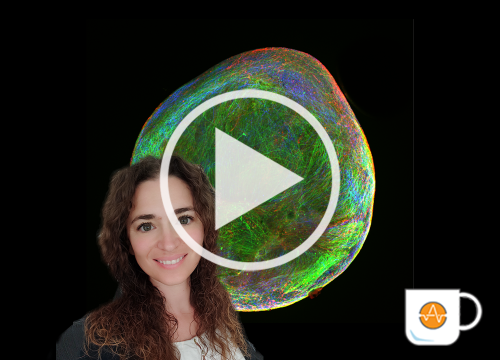 Patapia Neural Organoids (benos) video