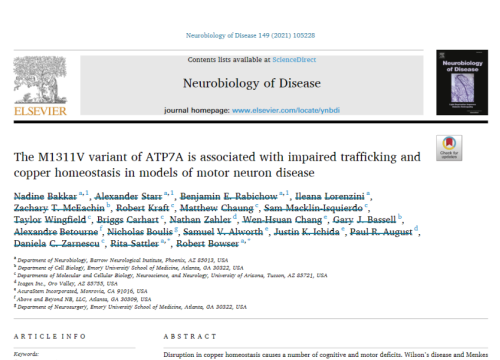 2020 publication on ALS and motor neuron disease