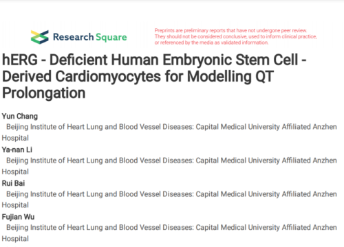 hERG deficient human embryonic stem cell with cardiomyocyte and AT prolongation
